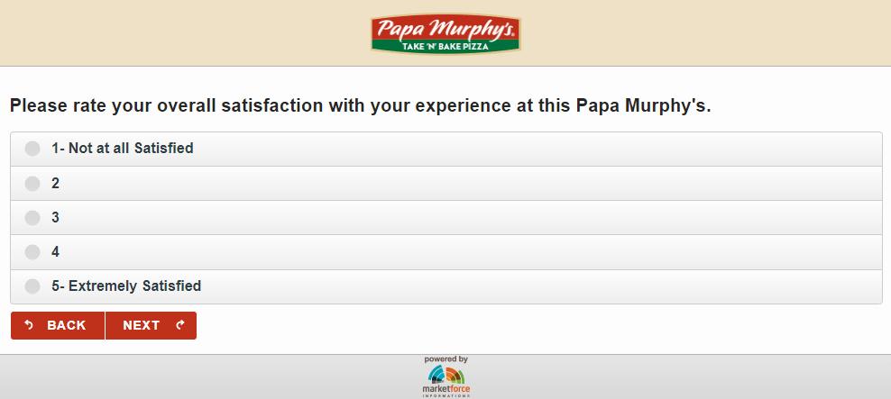 PapaSurvey Store Exprience